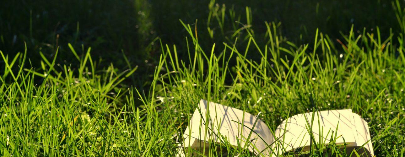 carte in iarba