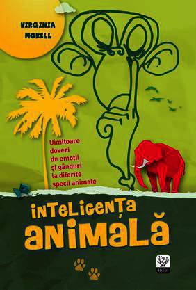 Inteligenta animala