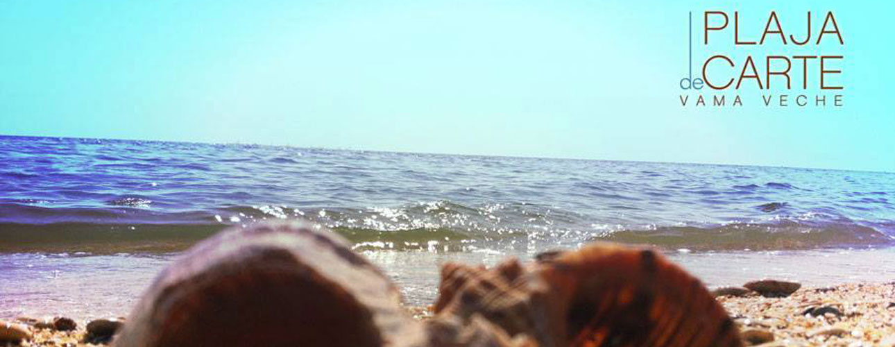 Plaja de Carte Vama Veche