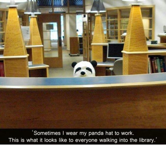 Palarie panda