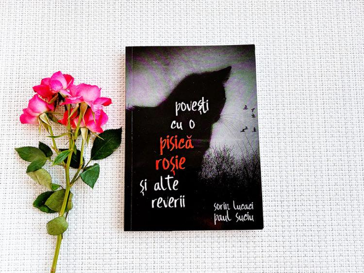 Povesti cu o pisica rosie, Sorin Lucaci